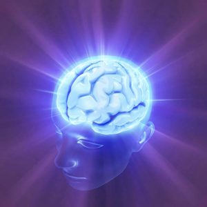 The Blissful Brain - Mindfulness and Meditation workshop